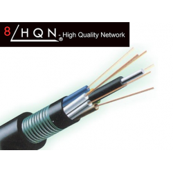 Fabricant fibre optique GYTS