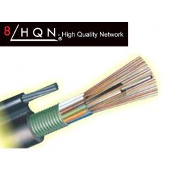 Fabricant fibre optique GYTC8S
